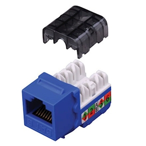 FeedbackAV 90-Degree CAT6 Keystone Insert - Blue